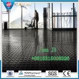 Anti-Slip Colorful Floor Mat, Antibacterial Floor Mat
