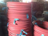 2015 New Stype Hy Steam Flexible Hose in Shandong