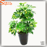 Real Like Plants Artificial Plants Bonsai Everygreen Plants
