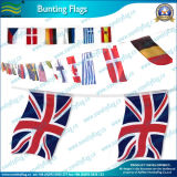 Bunting Flags, National Flags Bunting, Christmas Bunting Flags (NF11F06007)