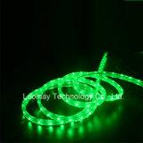 High Voltage Waterproof LED Strips 220V