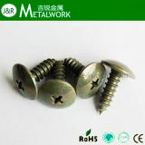 Stainless Steel Philip Truss Head Self Tapping Screw