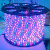Christmas LED Strip Light Outdoor Use LED Strip RGB