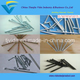 Factory Fluted Concrete Nails with Best Price