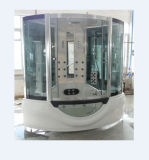 Gorgeous Elegant Tempered Glass Wall Steam Room (M-8214)