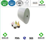 Hot Sale Single PE Coated Cup Paper