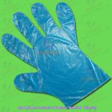 Disposable PE Gloves (WH - GLV)