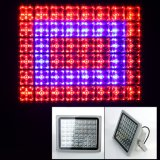 40W/60W/100W LED Grow Light Flood Light for Indoor Plants Hydroponics Plants