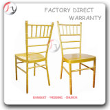 Bright Color Gold Customers Favorite Chairs (AT-219)