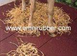 Equine Tile Rubber Flooring for Horse