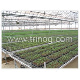 Movable seedbed for plant nursery