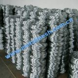 Low Carbon Steel Wire with ISO Certificate