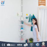 Elegant Standing Wall Mounted Acrylic Bathroom Shelf