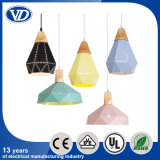 Colorful Iron Hanging Lighting Industrial Pendant Light
