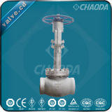 API/BS1873 Cryogenic Stainless Steel Globe Valve