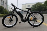 250W Bafang MID Motor Fat Tire Mountain Electric Bike