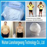 Fat Burning Amino Acid Lysine 541-15-1 L-Carnitine Raw Material