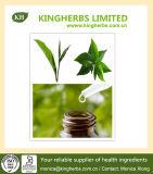 Tea Tree Oil, Melaleuca Oil Terpinen-4-Ol