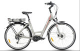 City Type, MID-Drive Electric Bike (TDB12Z)