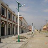 8.5m LED Solar Street Lamp