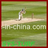 Natural Looking with Artificial Grass for Cricket Field