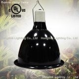 "UL 9.5"" Deep Dome Reptile Lamp for Reptile Terrarium Heat and Light"