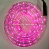 Eco-Friendly 2 Wire Pink Horizontal LED Rope Light