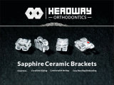Roth Sapphire Ceramic Bracket From China