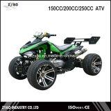 Gy6 Racing ATV 150cc/200cc/250cc Gy6 Automatic Racing Quad Bike