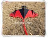 2016 Promotional Stunt Kite for Sport Kite