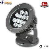 Outdoor Light 12W LED Project Light in IP65 Rating