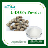 Mucuna Pruriens Extract, L-Dopa, Levodopa CAS: 59-92-7 Plant Extract