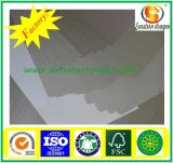250g Duplex Board with Grey Back/Duplex Board/Duplex Paper
