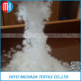 High Quality 95/5% Washed White /Grey Goose Duck Feather Down