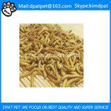 Wild Bird Food Dried Mealworms