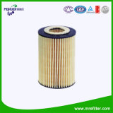Auto Spare Parts & Oil Filter Element for Audi Series Hu7020z