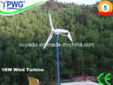 1kw Pitched Controlled China High Efficiency Wind Turbine