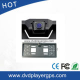 Car Camera/CCD Camera/Mini DVR/Security Camera