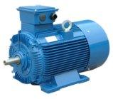 Ie2 (CE) Y2 Three Phase Electrical Motor (Y2-160M-4)