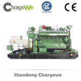 Ce Proved 1MW Natural Gas Generator Set with Global Warranty