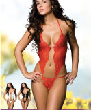 Sexy Lace Lingerie/Red Lingerie Set/Popular Lingerie for Sexy Lady (51003-1)