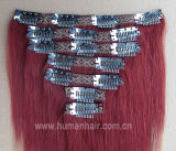 Double Drawn Virgin Indian Hair Clip Hair Extension