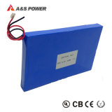 Solar Battery Solar LED Light Battery Pack 12V 20ah LiFePO4 Battery