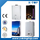 Silver Metallic Color Coating Gas Water Heater
