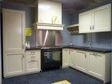 Home Furniture Cupboard Kitchen Cabinet Door (GLOE059)