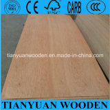 Keruing Commercial Plywood for Furniture and Decoration