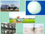Plant Diseases Fungicide 98% Tc Cymoxanil