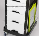 Professional High-Quality Plastic White Beauty Salon Trolley