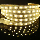 5050 LED Strip Light Dimmable 60LEDs 22-24lm with Ce/RoHS 50m/Roll