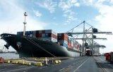 Ningbo/China Container Trailer / Logistics Shipping to Conoepcion Valdivia San-Vicente